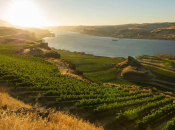 Maryhill Winery offers a scenic setting for Columbia Gorge wine tasting.