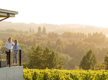 Ponzi offers a scenic setting for Willamette Valley wine tasting