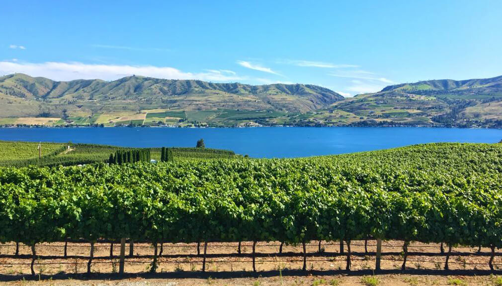 Lake Chelan wineries such as Benson Vineyards entice