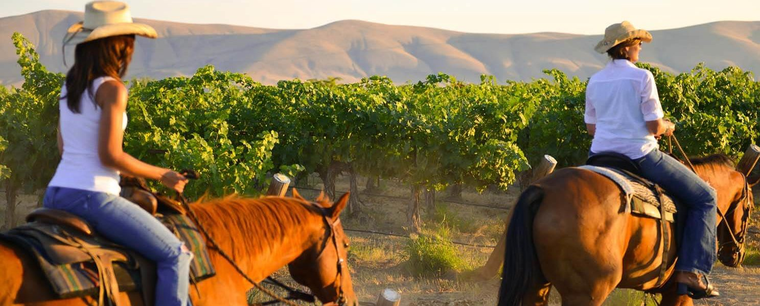 A wine country tour with Red Mountain Trails
